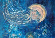 «Πλαγκτόν: ένας θαυμαστός υδάτινος κόσμος» στο Μουσείο Γουναρόπουλου