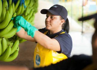 Δέσμευση βιωσιμότητας από την Chiquita