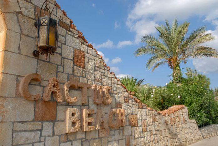 Το Cactus Beach τιμήθηκε στα βραβεία TEZ Worldberry 2017