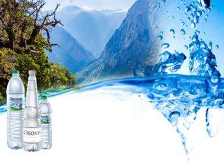 Χρυσή κατάκτηση για το Φυσικό Μεταλλικό Νερό ΘΕΟΝΗ