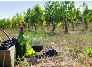"""Το Ελληνικό κρασί """"ταξιδεύει"""" στην Πολωνία"""