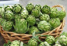 Η «Αγκινάρα Ιρίων» θεωρείται προστατευόμενο προϊόν