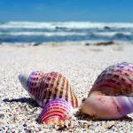 θαλάσσιος τουρισμός